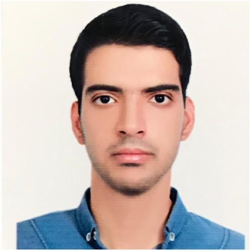 Moein Salimi AI Engineer